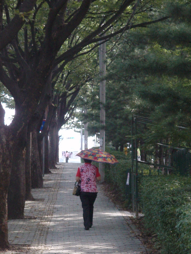 Umbrella-lady.jpg