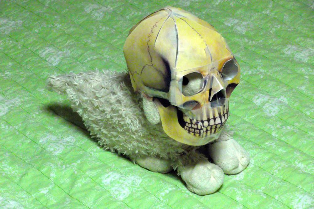 Posie-Skull.jpg