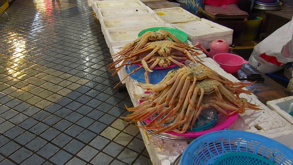 Traditional-Market.jpg
