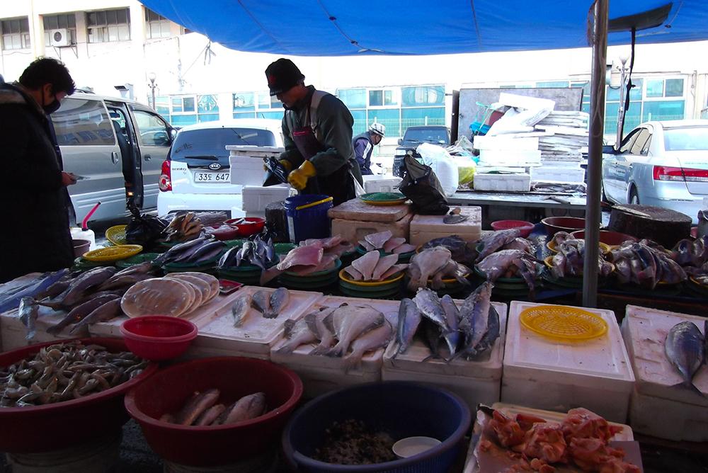 Chungju Traditional Market, Fish Vendor