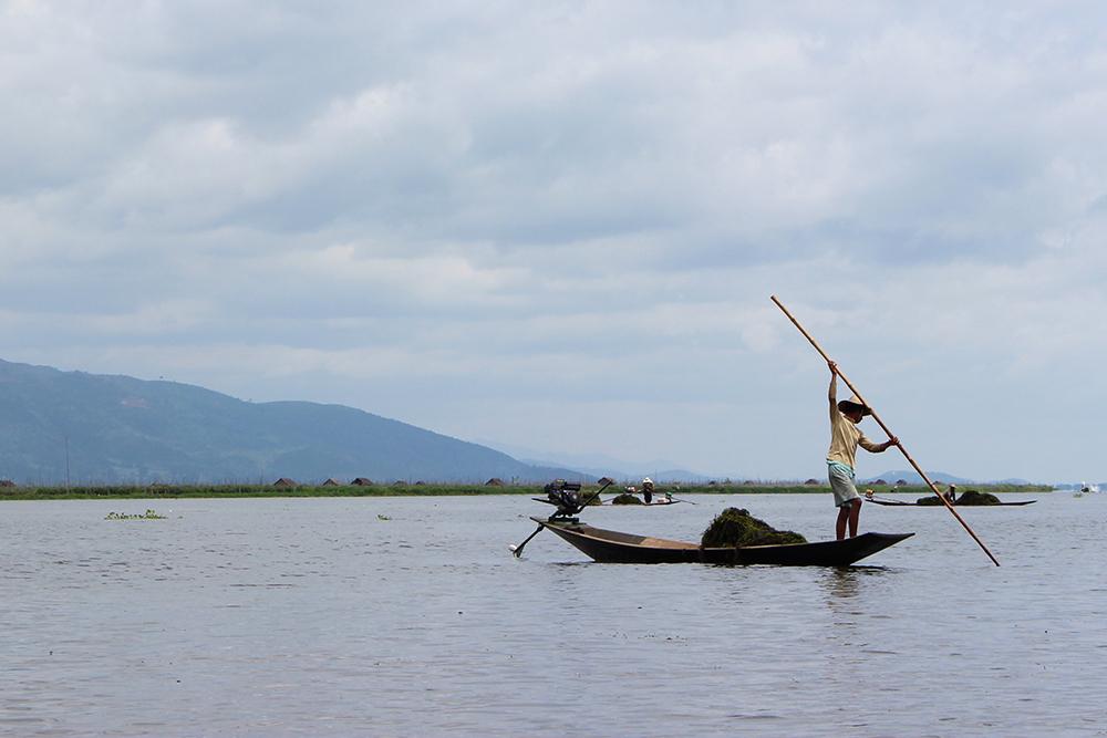 Boatman1.jpg