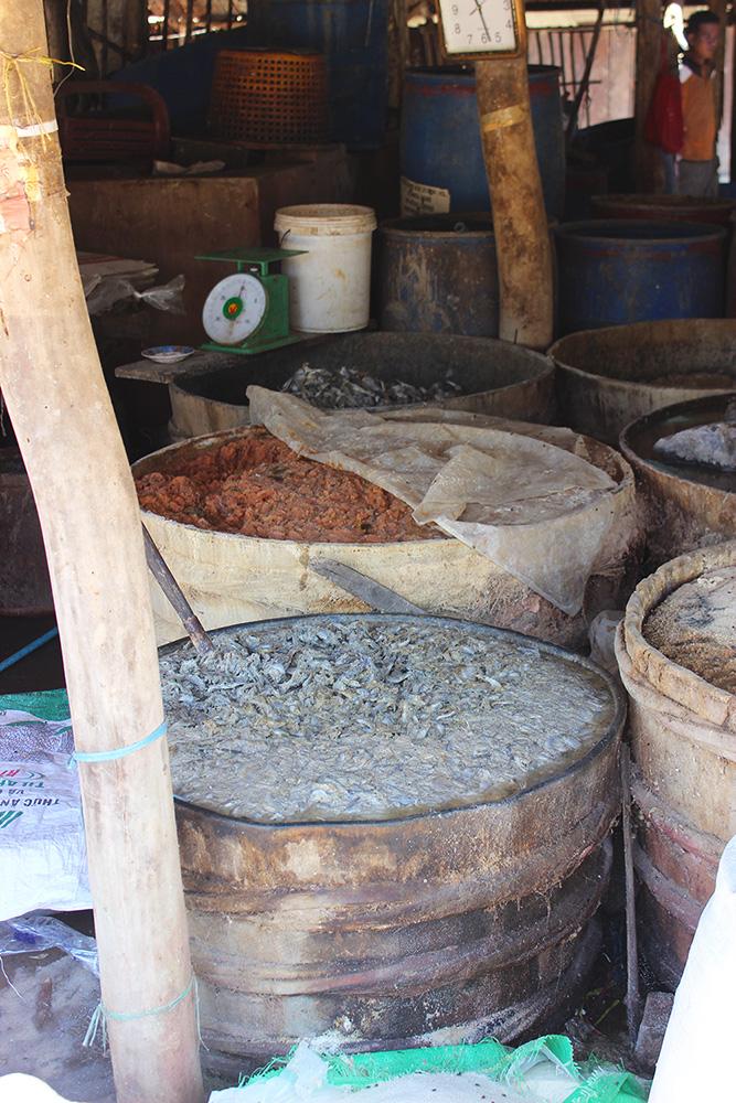 fish-barrels.jpg