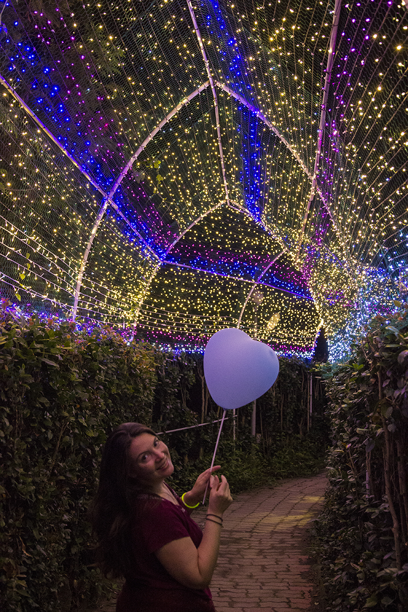 Romantic Maze, LED Canopy.jpg