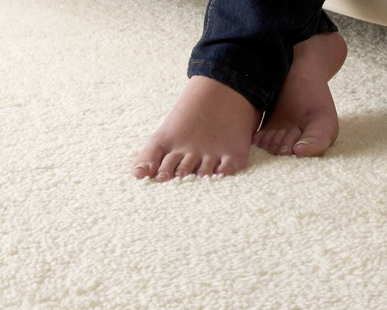 carpet.png