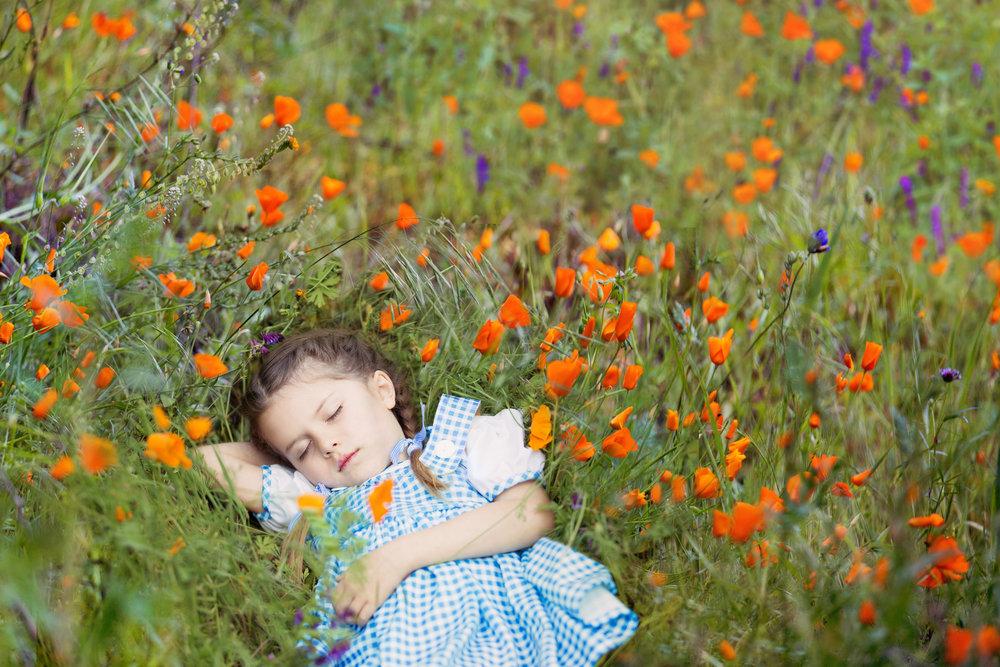 sleeping_dorothy.jpg