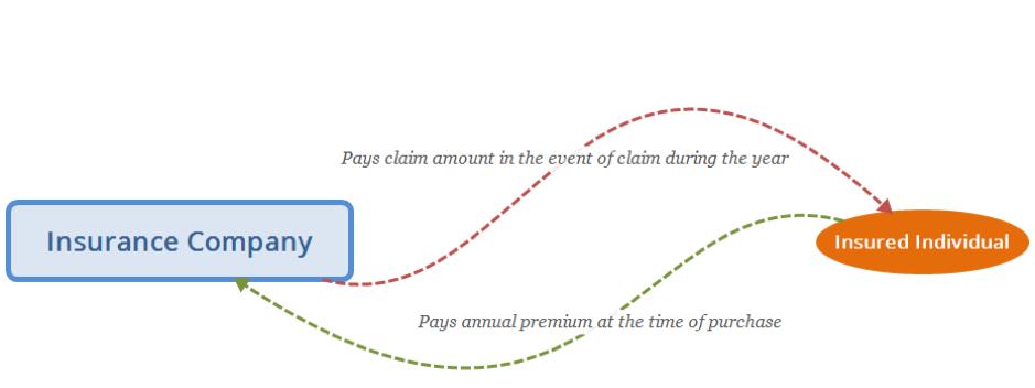 Figure 1: Regular Insurance Arrangement