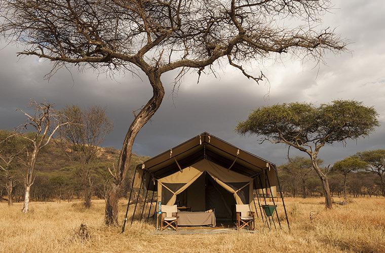 Affordable_safaris_Tanzania