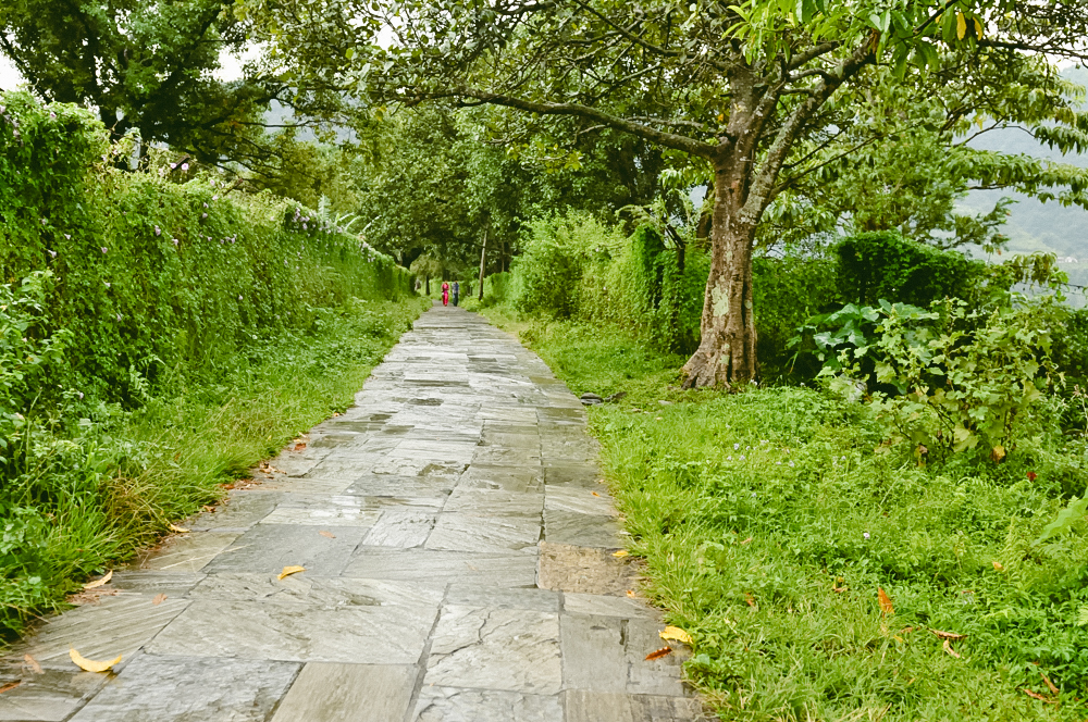 CHITWAN NATIONAL PARK  - Visit the heart of the jungle in Chitwan, where we'll stay at the Jungle Villa Resort and craft activities that align with our desires. Washing elephants, open-top jeep rides through the preserve, a canoe ride down the Rapti River where we'll spot crocs and colorful birds, a jungle walk, and a lovely cultural show to introduce you to Tharu singing and dancing.