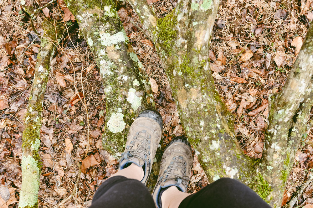 DEVELOP MINDFULNESSLearn a basic mindfulness meditation that you can practice anywhere on your own. Begin your practice during the 7 mile hike through Ricketts Glen. -