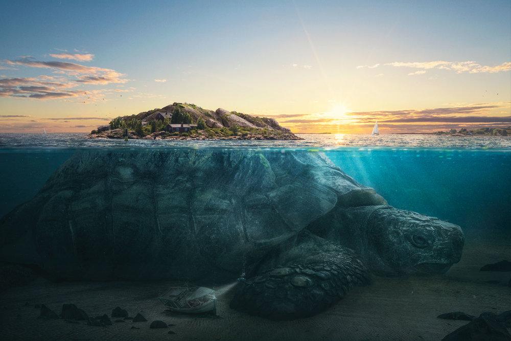 Turtle Island, 2017
