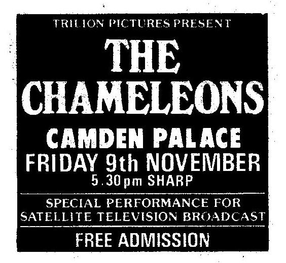 Nov 9 - Chameleons.png