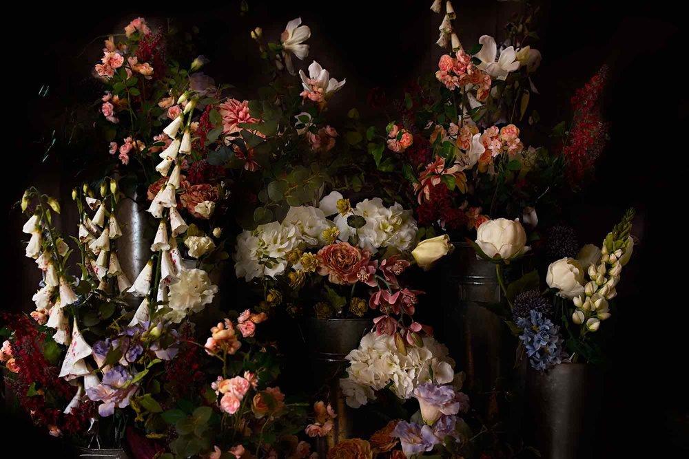 Dark-Flowers.jpg
