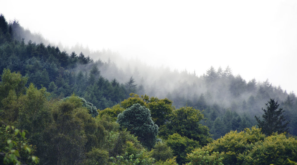 scotland hills.jpg