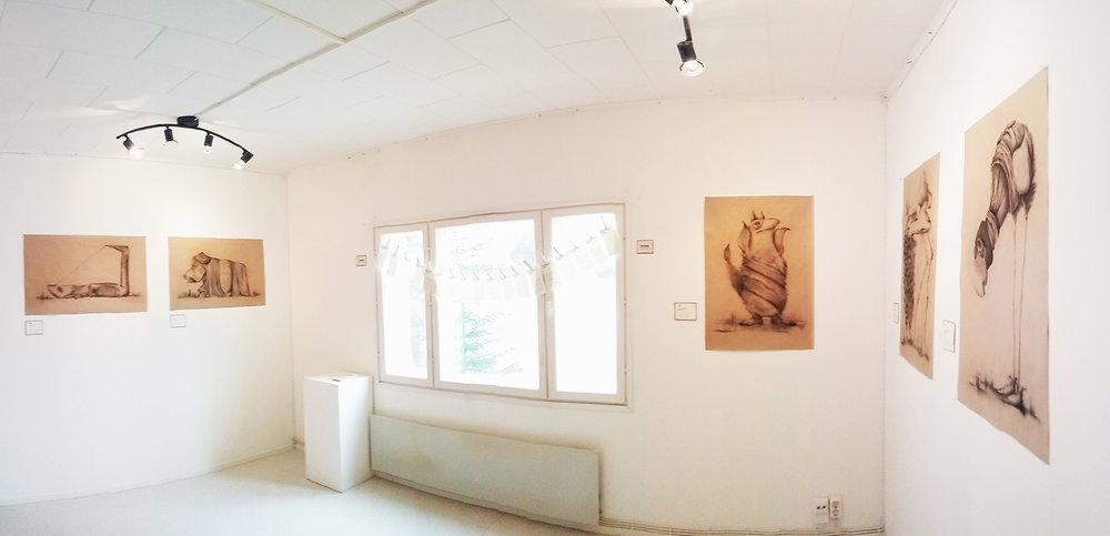 ks-gallery-5.jpg
