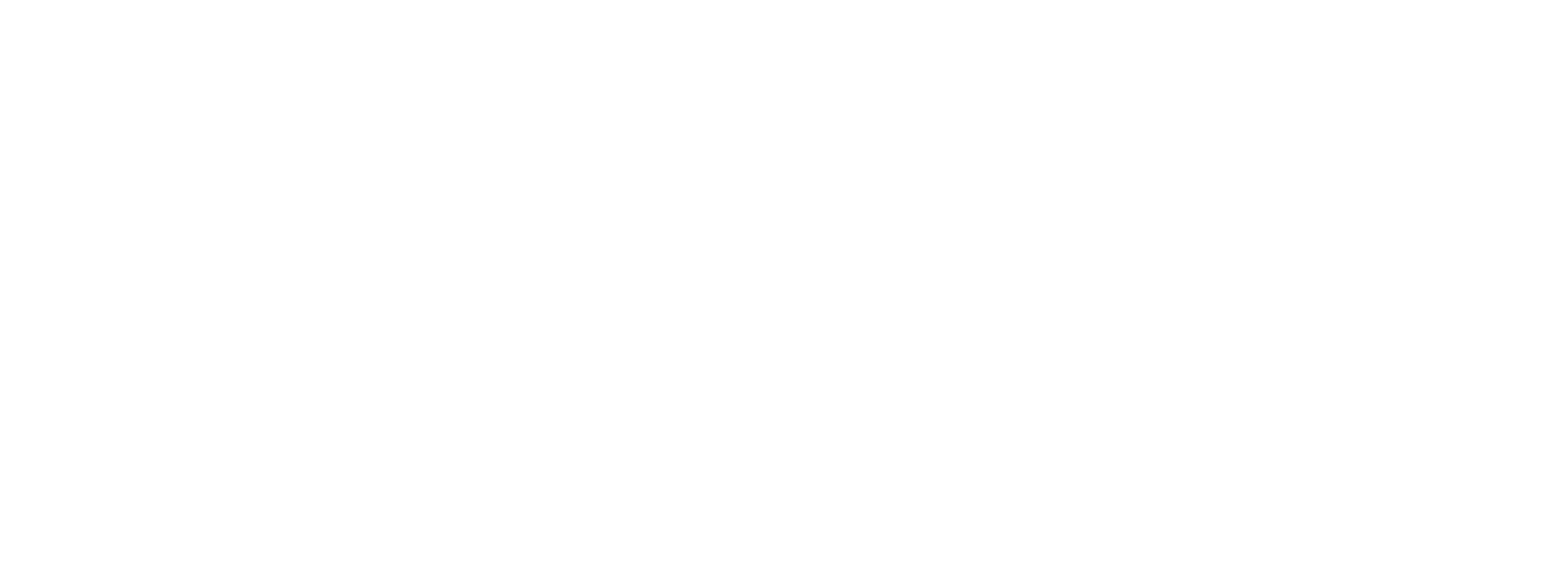 SRMC - Security Risk Management Consultants
