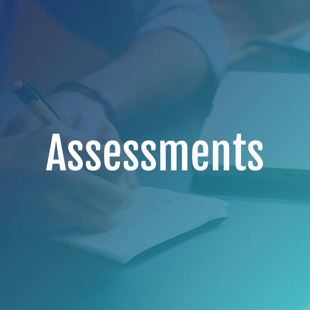 assessment-01.jpg