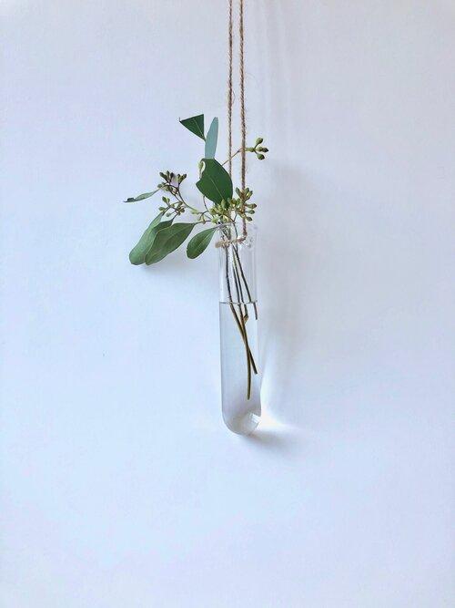 Shop Online Brook Drabot Glass