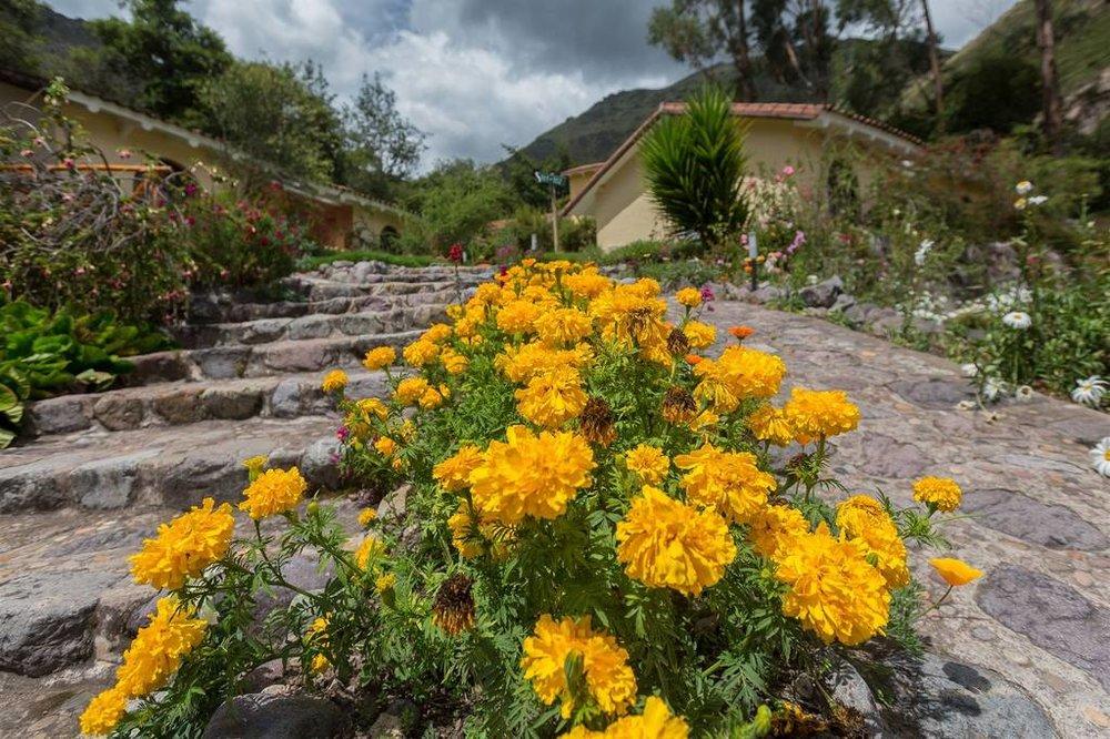 hacienda-del-valle-89.jpg.1024x0.jpg