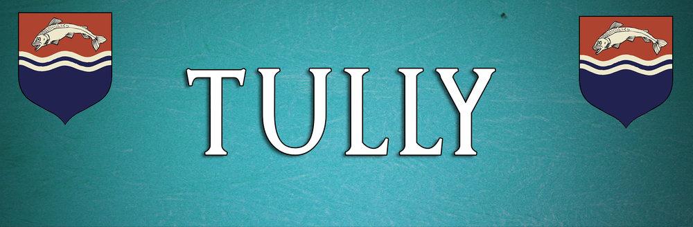 RESULT - Tully BANNER MINI.jpg