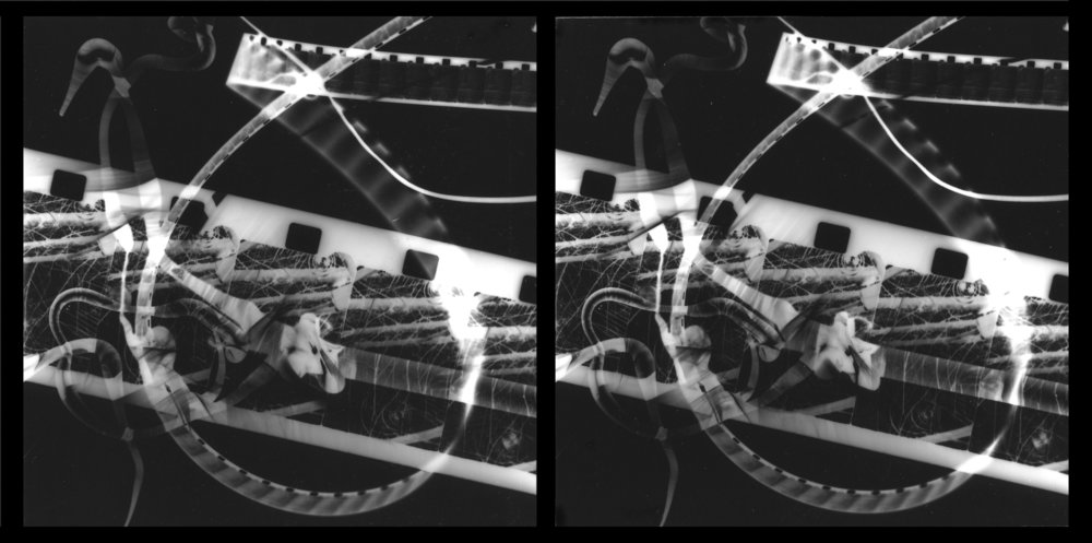 Stereo photogram, 2004