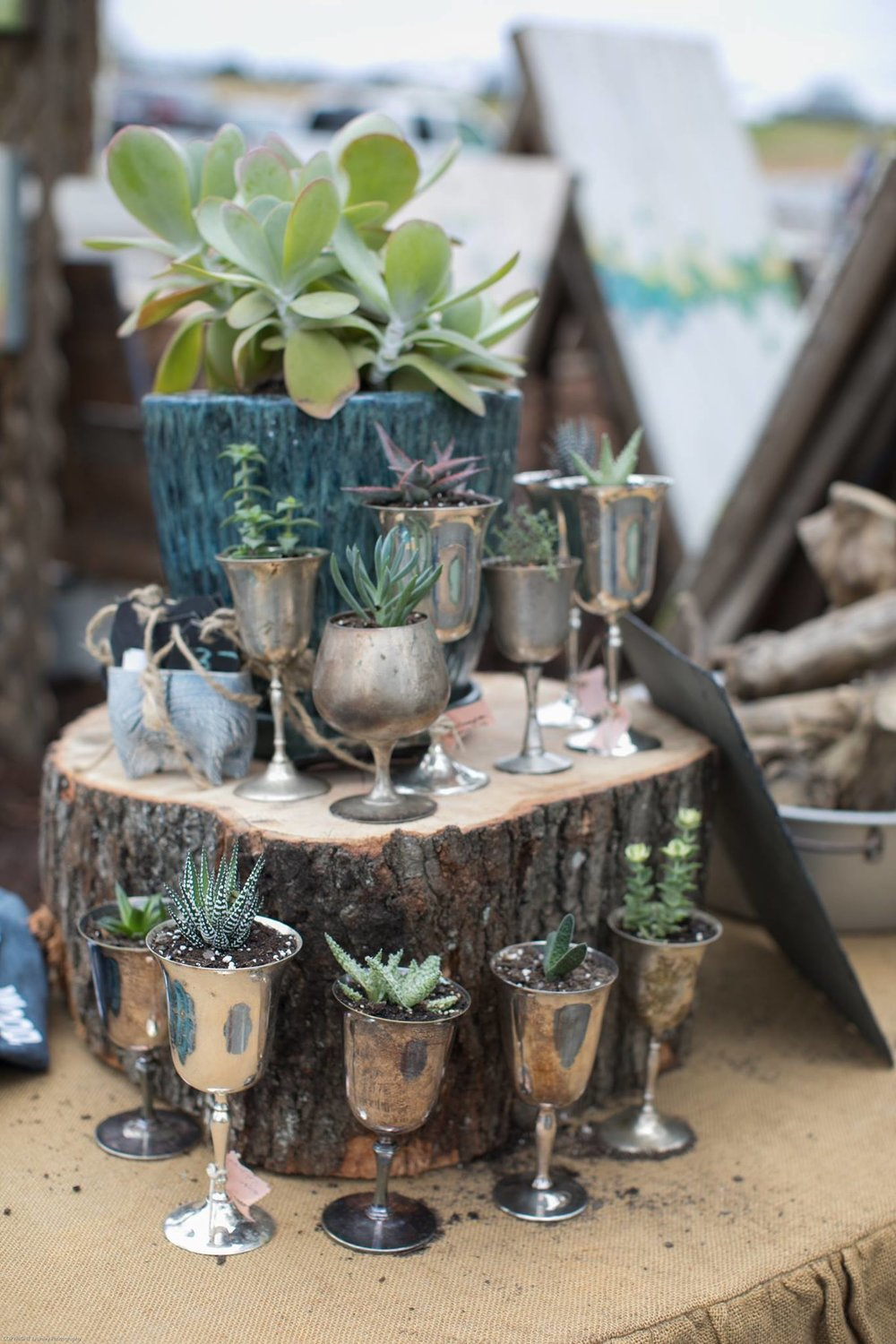 Pinewood Forest Marketfest