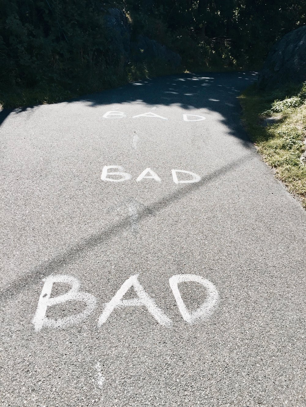 bad_branno-microtomacro.jpg