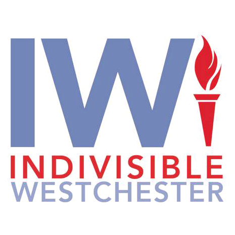 Indivisible Westchester Local 456 Teamsters Endorsement for Shelley Mayer