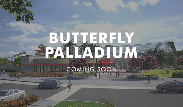 Butterfly Palladium - Buena Park, CA
