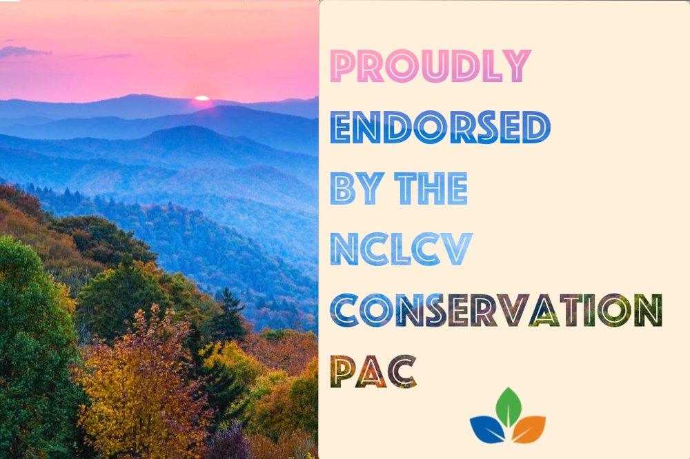 Endorsement Image (Mountains).jpg
