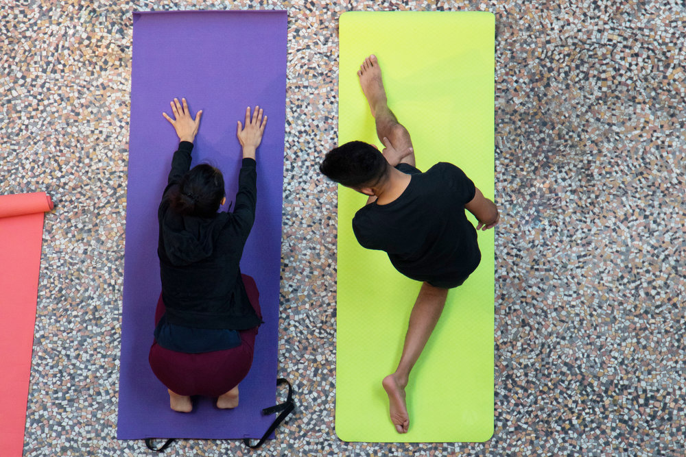 Yoga in Hintze Hall, Natural History Museum 5.jpg