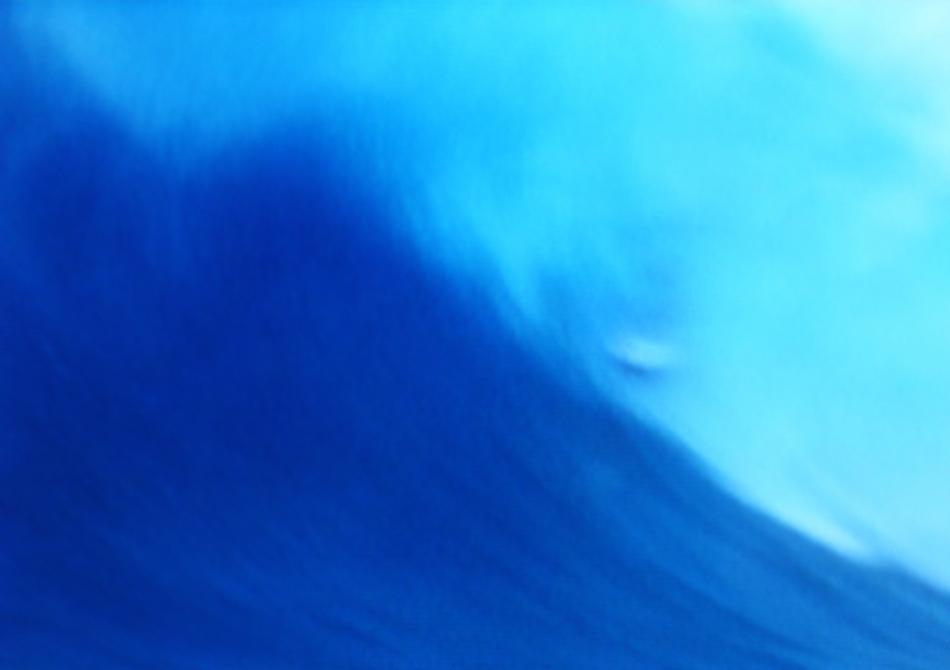 5surferbest.jpg