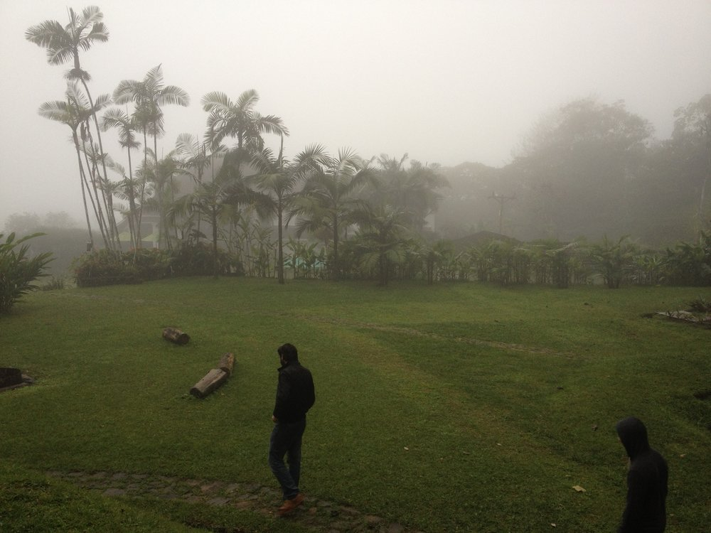 ben cloud forest aaron andrew.jpg