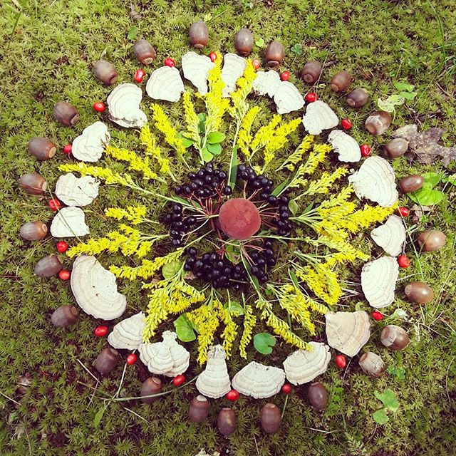 A walking mindfulness meditation: collect seeds, leaves and berries from around your neighborhood and arrange them into a seasonal botanical mandala.