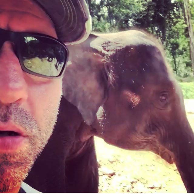 Powerful @joerogan with multiple elephant ('s heads). No real reason for this, other than that we love Joe and Elephants. Oh yeah, and to say don't forget, this Thursday, Friday and Saturday, come for cocktails and some dinner (20:00 to 22:30) and pay what you like for the food. It's a cool 18 degrees in the pub, and we've got some classic summer cocktails to help you get cool and stay cool 😎 . . . . . . #supportlocalbusiness #votewithyourwallet #paywhatyoufeel #supportlocal #useitorloseit #summercocktails #powerfuljoerogan #elephants