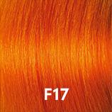 f17.jpg