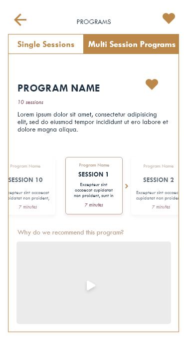 15.1 Programs – 2.png