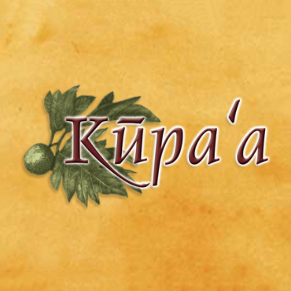 Kupaa-Business-Planners.png