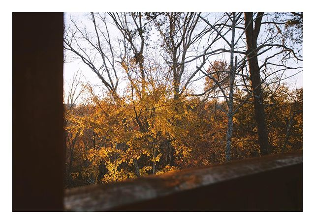 Photo of Tennessee, from this past November and the tail end of fall. - Before things got busy, when I had time to feel creative. The creator/explorer version of me feels foreign and far away. It's honestly just survival right now. Looking forward to the up and up.