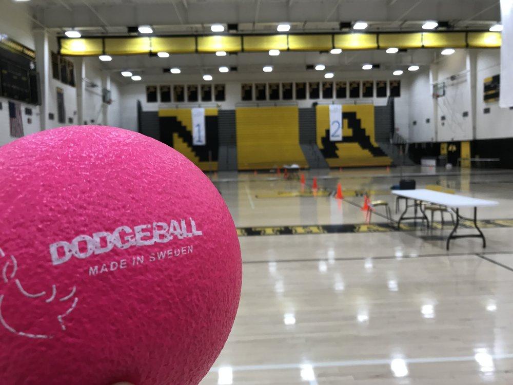 NASH dodgeball registration - Thursday, April 18th, All School Day @ NASH