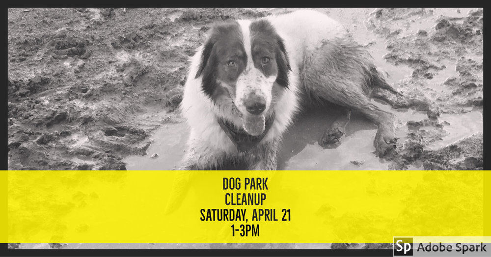 Columbia Heights Dog Park Cleanup