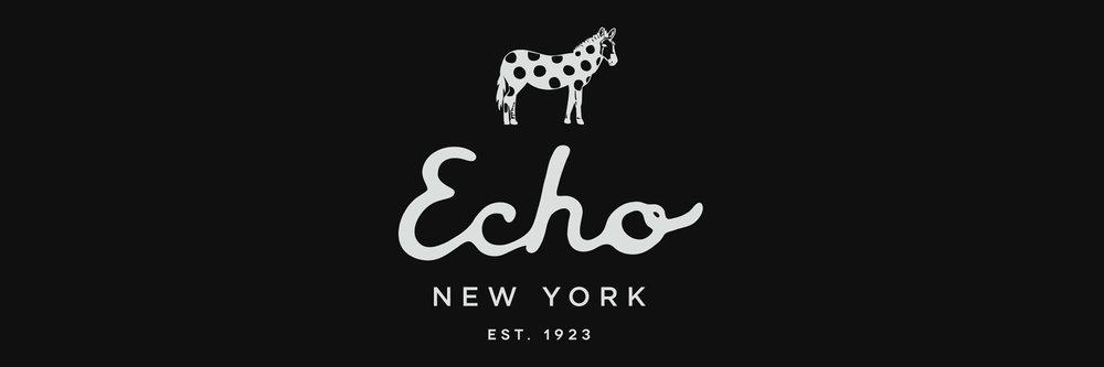 эхо дизайн 2