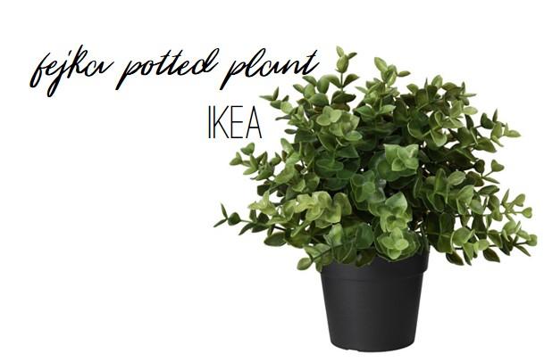 Ikea Fejka Potted Plant -- realistic fake boxwood plant