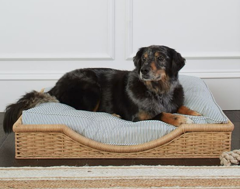 Pottery Barn and Sarah Bartholomew Collection Hughes Pet Bed.