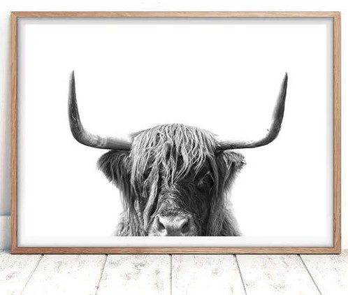 Oh Finale Highland Cow Print