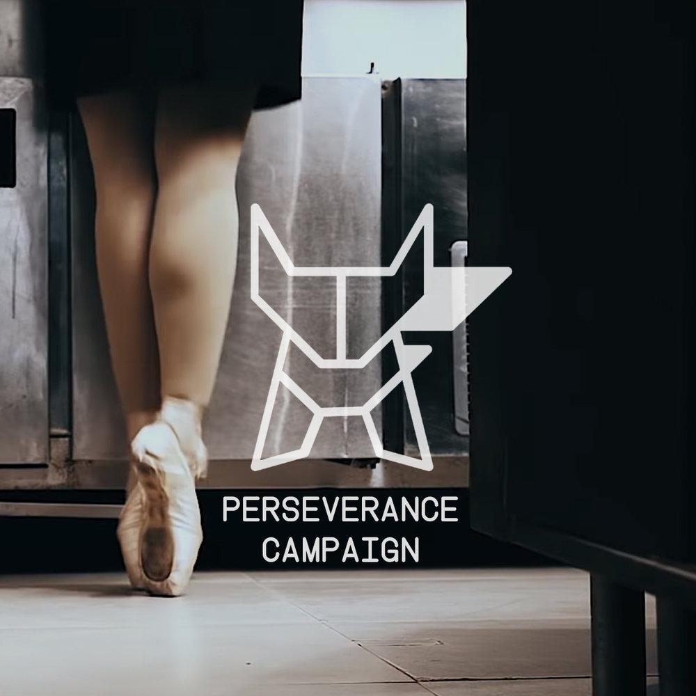 Ballerina Thumb P Campaign.jpg