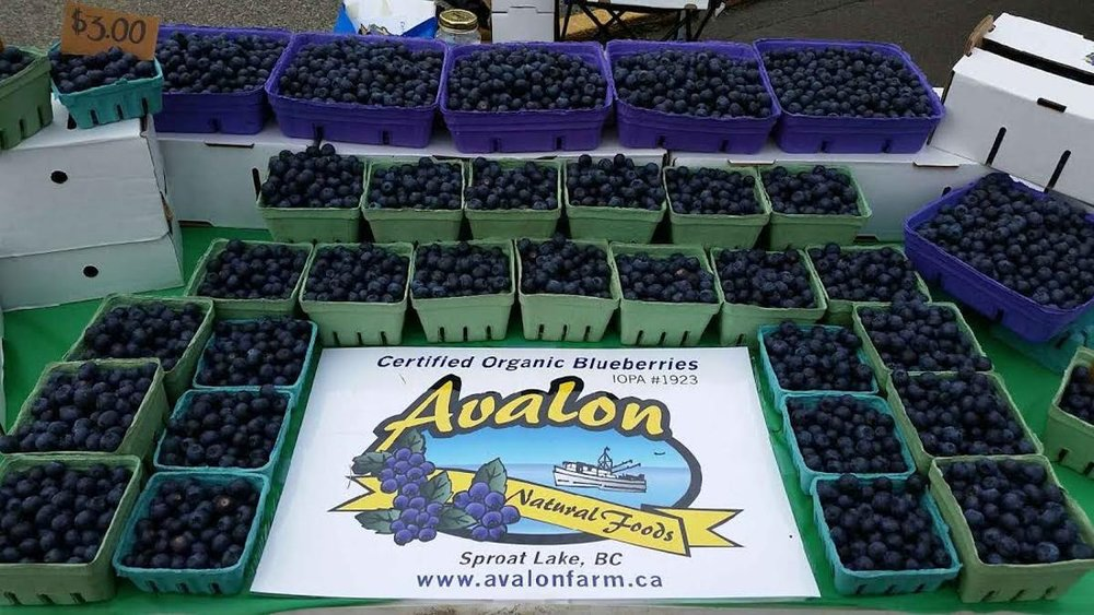 Avalon market-photo.jpg