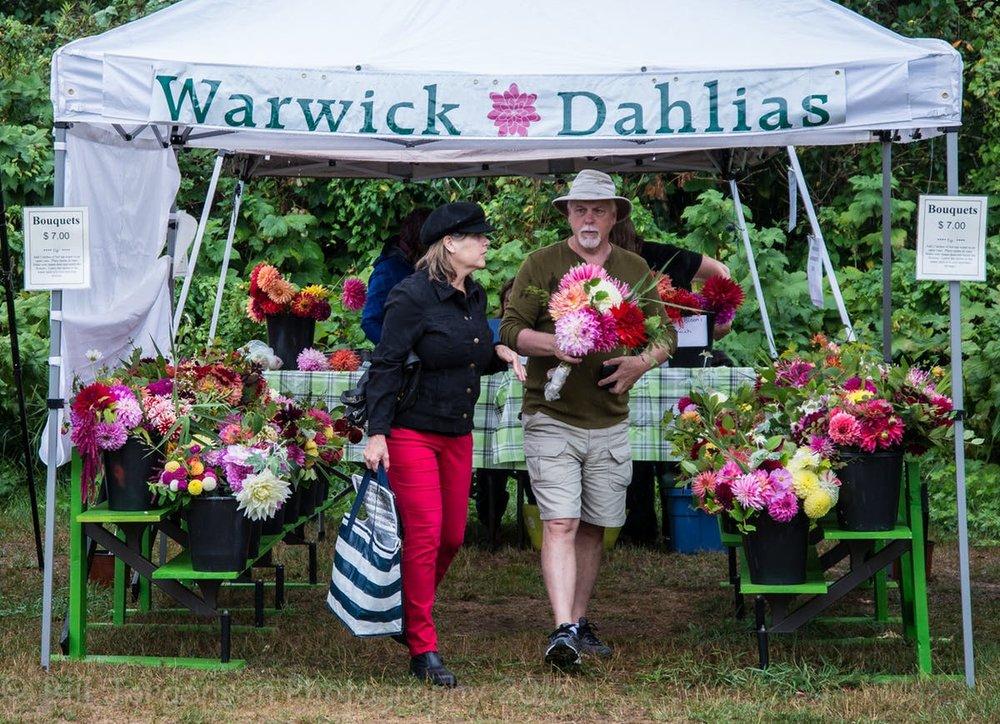 Warwick Dahlias farmers-market-2015-aug-8.jpg