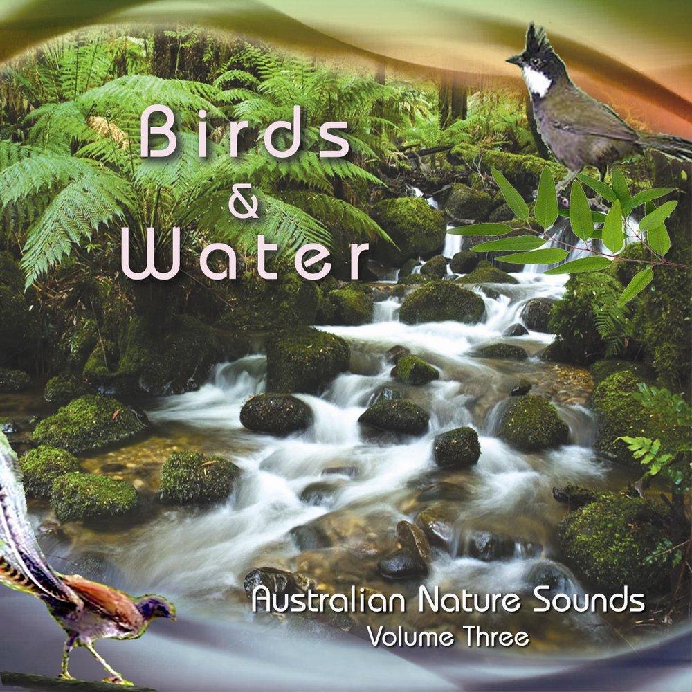 Birds &Water (NMS Volume 3)