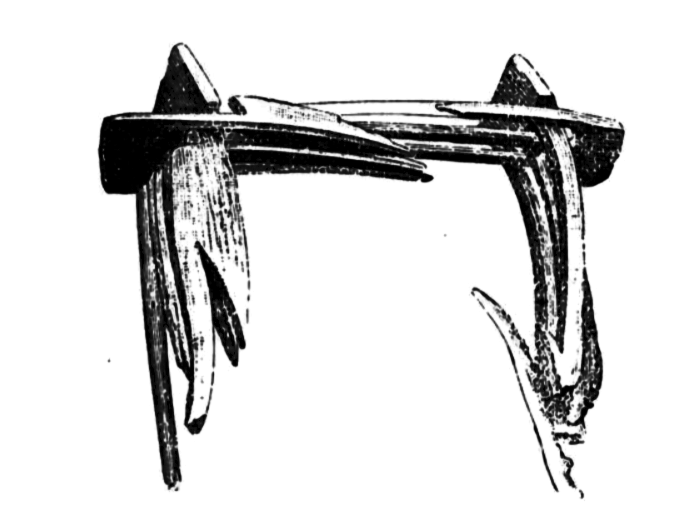"Sketch of ""The mind ring"" as it was found. From Gustafson (1890a: 12)"