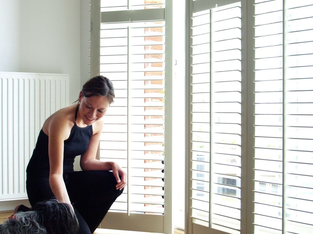 Lady with Dog small - Contemporary Shutters in Hamilton.jpg